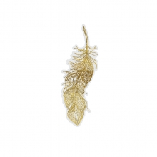 "GIFT TAG ""GOLDEN FEATHER"""